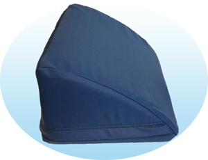 TP WEDGE W/COVER